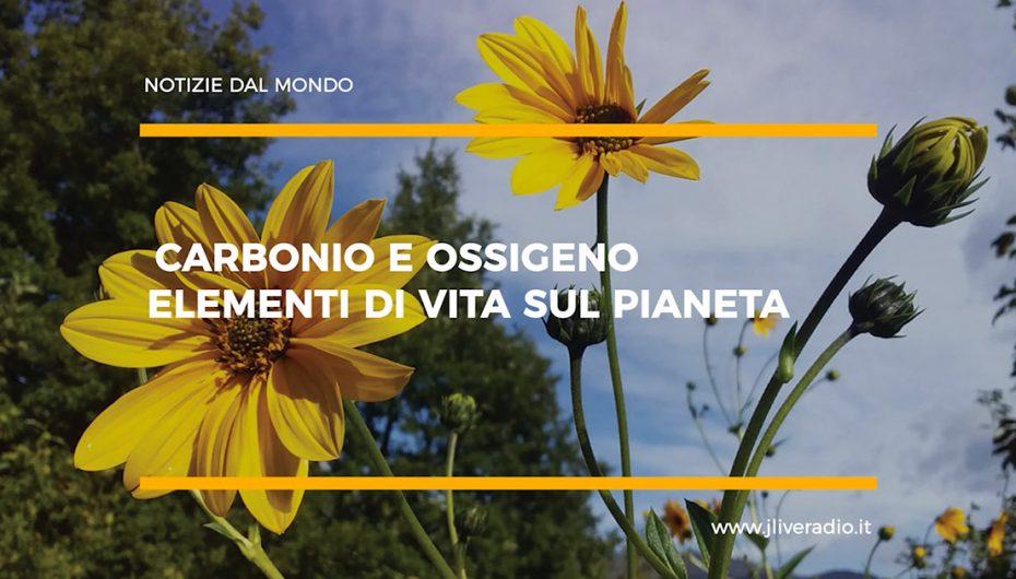 Carbonio e Ossigeno (CO2) Elementi di Vita sul Pianeta